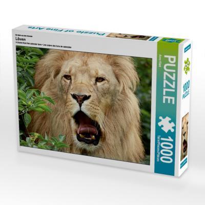 Ein Motiv aus dem Kalender Löwen (Puzzle)