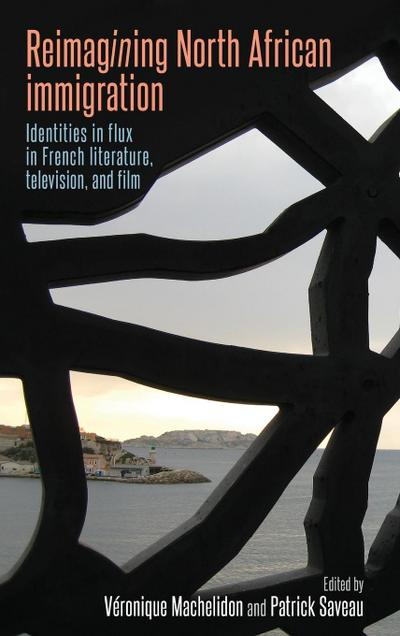 Reimagining North African Immigration