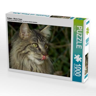 Katzen - Maine Coon (Puzzle)