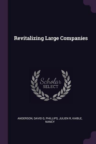 Revitalizing Large Companies