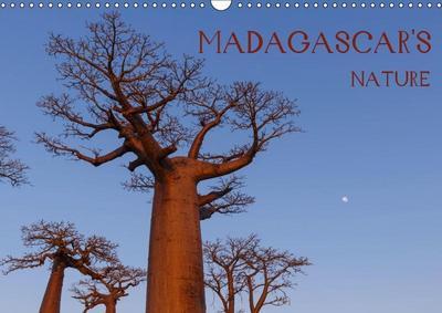 Madagascar's nature (Wall Calendar 2019 DIN A3 Landscape)