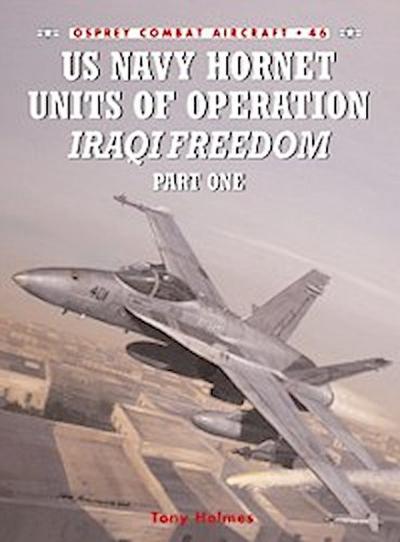 US Navy Hornet Units of Operation Iraqi Freedom (Part One)