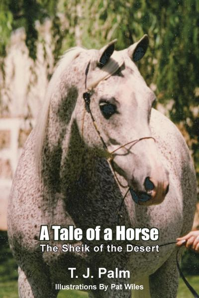 A Tale of a Horse: The Sheik of the Desert