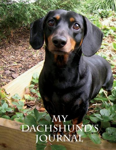 My Dachshund's Journal: Building Memories One Day at a Time
