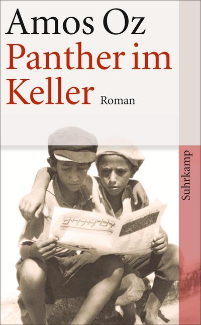 Panther im Keller: Roman (suhrkamp taschenbuch)
