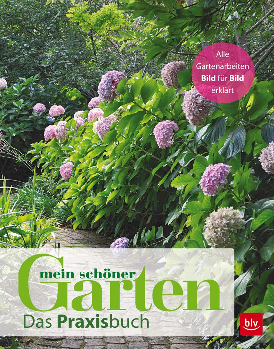 Mein schöner Garten  Das Praxisbuch  Deutsch  482 farb. Abb. 4 Ill.  482 Ab ...