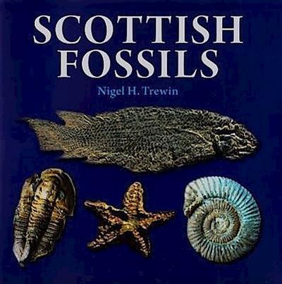 Scottish Fossils