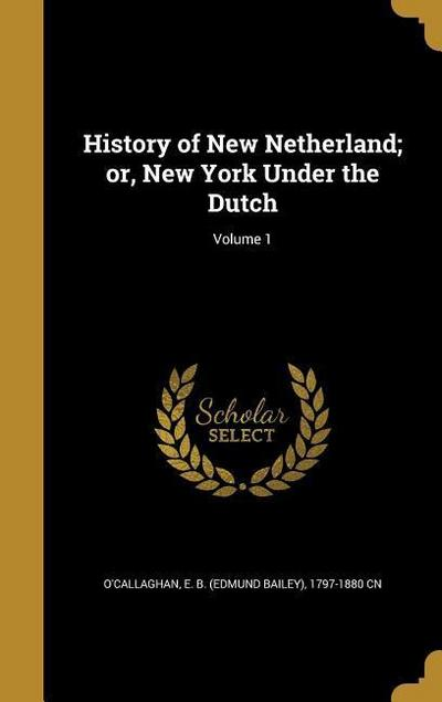 HIST OF NEW NETHERLAND OR NEW
