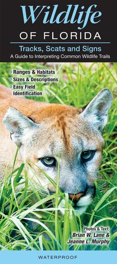 Tracks, Scats & Signs of Florida Wildlife: A Guide to Interpreting Common Wildlife Trails