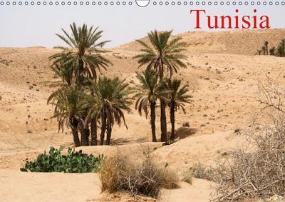 Tunisia (Wall Calendar 2019 DIN A3 Landscape)