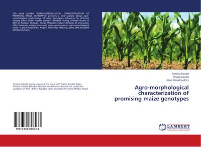 Agro-morphological characterization of promising maize genotypes