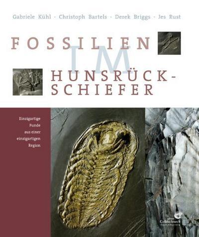 Fossilien im Hunsrück Schiefer