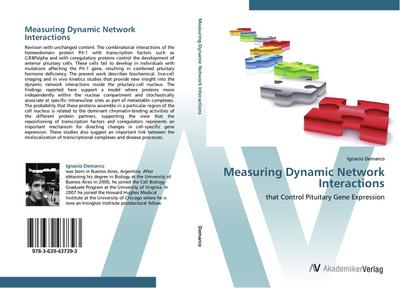 Measuring Dynamic Network Interactions