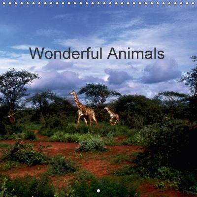 Wonderful Animals (Wall Calendar 2018 300 × 300 mm Square)