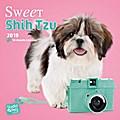 Sweet Shih Tzu - Shih Tzu 2019 - 18-Monatskalender