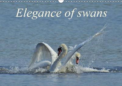 Elegance of swans (Wall Calendar 2019 DIN A3 Landscape)