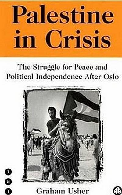 Palestine in Crisis: The Struggle for Peace and Political Independence After Oslo