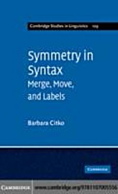 Symmetry in Syntax