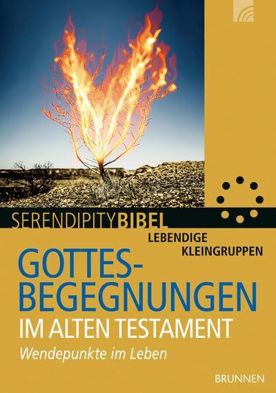 Gottesbegegnungen im Alten Testament: Wendepunkte im Leben