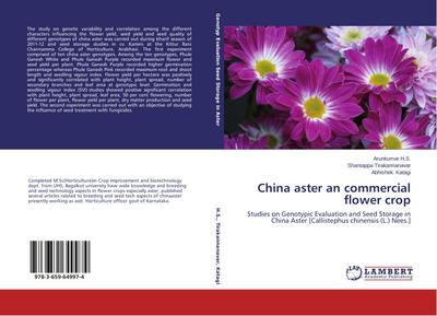 China aster an commercial flower crop