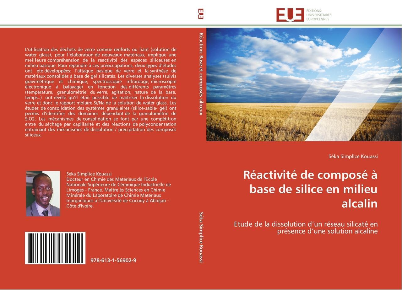 Séka Simplice Kouassi / Réactivité de composé à base de silice ... 9786131569029