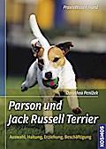 Parson und Jack Russell Terrier; Auswahl, Hal ...