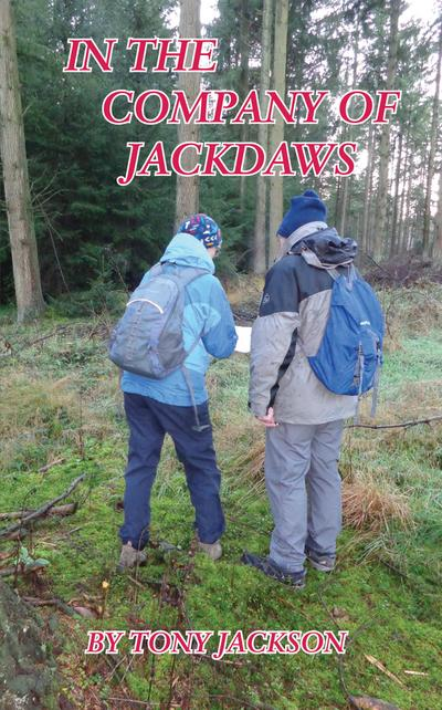 In the Company of Jackdaws
