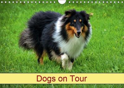 Dogs on Tour (Wall Calendar 2019 DIN A4 Landscape)
