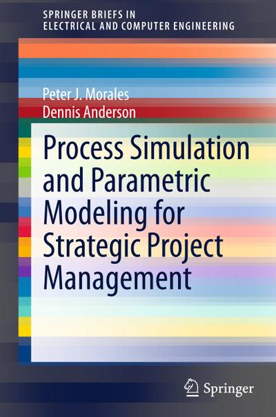 Process Simulation and Parametric Modeling for Strategic Project Management