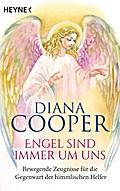 Engel sind immer um uns: Bewegende Zeugnisse  ...