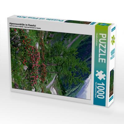 Alpenrosenblüte im Razoital (Puzzle)