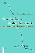 Eine Saugader in der Steiermark