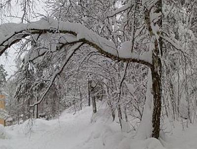 Stockholm im Winter - 2.000 Teile (Puzzle)