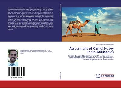 Assessment of Camel Heavy Chain Antibodies