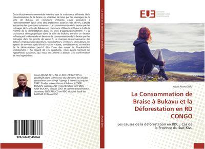 La Consommation de Braise à Bukavu et la Déforestation en RD CONGO
