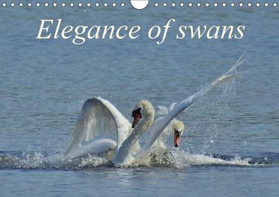 Elegance of swans (Wall Calendar 2019 DIN A4 Landscape)