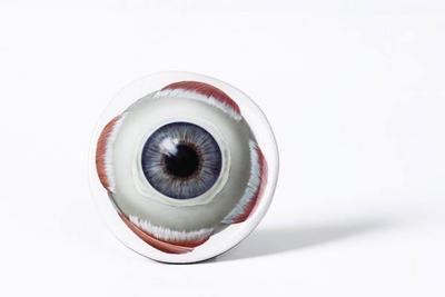 PROMETHEUS Magnet Auge