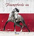 Traumpferde 2019. Postkartenkalender