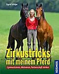 Zirkustricks mit meinem Pferd; Gymnastizieren ...