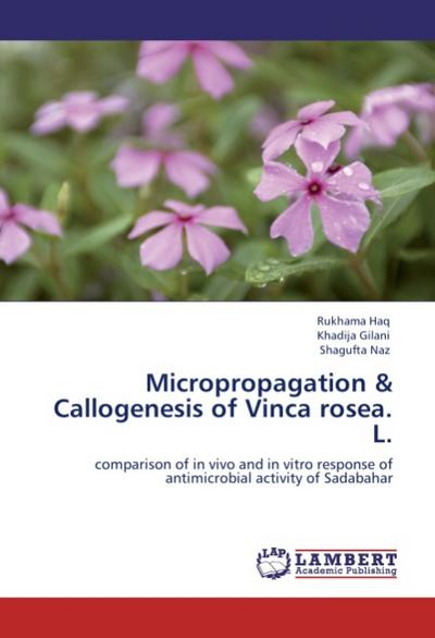 Micropropagation & Callogenesis of Vinca  rosea. L.