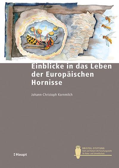 Einblicke in das Leben der Europäischen Hornissen