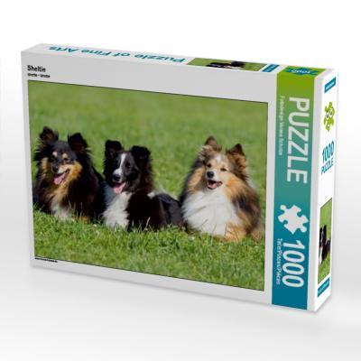 Sheltie (Puzzle)