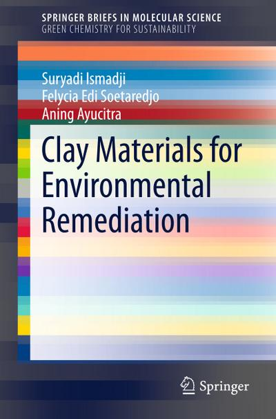 Clay Materials for Environmental Remediation