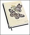 Schmetterlinge Taschenkalender 2019 - Terminplaner mit Wochenkalendarium