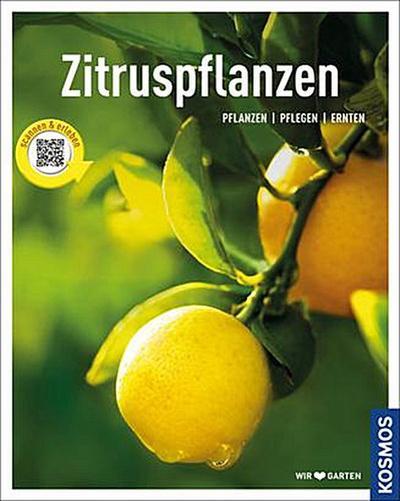 Zitruspflanzen; gestalten - pflanzen - ernten; Mein Garten; Deutsch; 0 schw.-w. Fotos, 105 farb. Fotos, 0 Illustr., 0 Illustr.