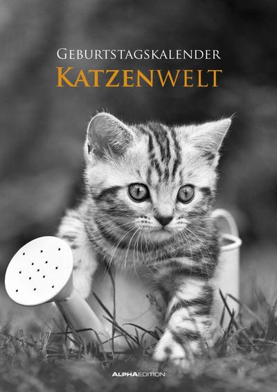 Geburtstagskalender Katzenwelt immerwährend