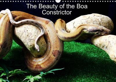 The Beauty of the Boa Constrictors (Wall Calendar 2019 DIN A3 Landscape)