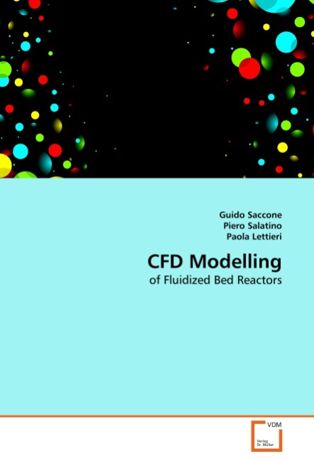 Guido Saccone / CFD Modelling /  9783639314298