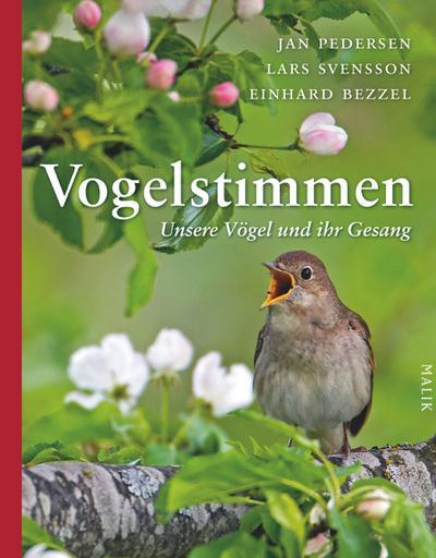Vogelstimmen: Unsere Vögel und ihr Gesang