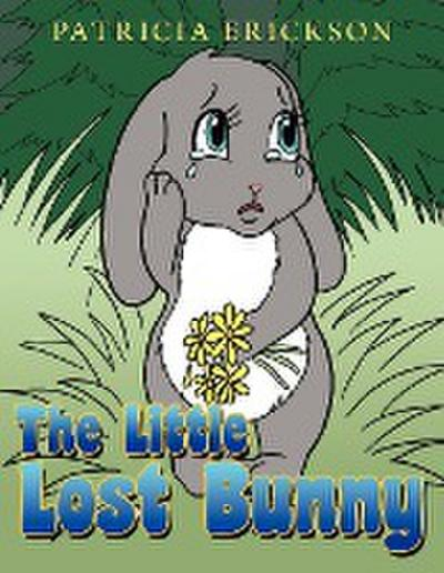 The Little Lost Bunny